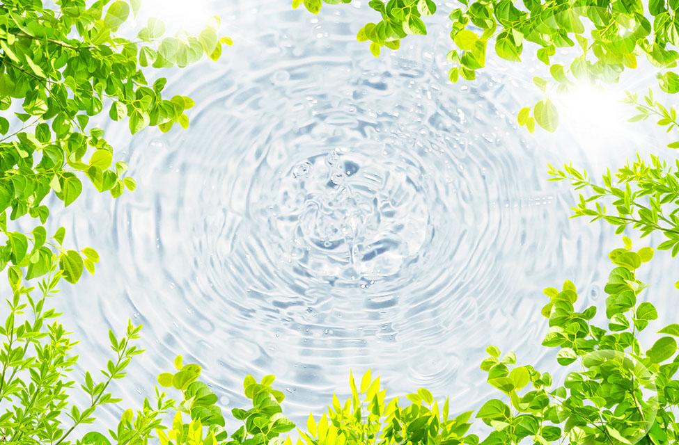 水質・衛生管理